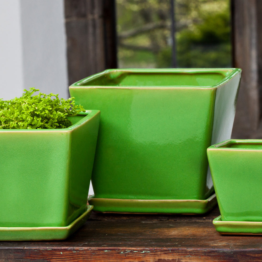 Darcy Planter Set of 6 in Yellow Green - Soothing Company
