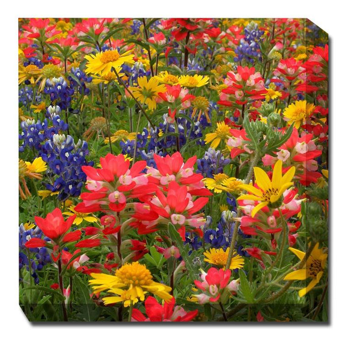 Field Flowers Canvas Art - Outdoor Art Pros