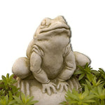 Frankie Frog Cast Stone Garden Statue - Soothing Company