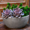 //cdn.shopify.com/s/files/1/2507/6008/products/Geo_Bowl_Planter_-_Set_of_Four.jpg?v=1613360781