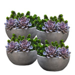 Geo Bowl Planter - Set of Four - Soothing Company