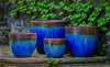 //cdn.shopify.com/s/files/1/2507/6008/products/Marcel_Planter_-_Set_of_4_in_Bronze_Blue.jpg?v=1517478286