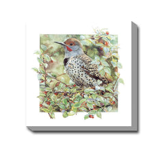 Northern Flicker Canvas Wall Art