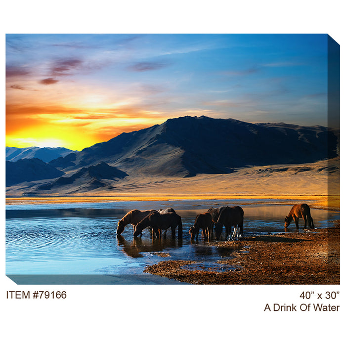 A Drink of Water Outdoor Canvas Art - Soothing Company