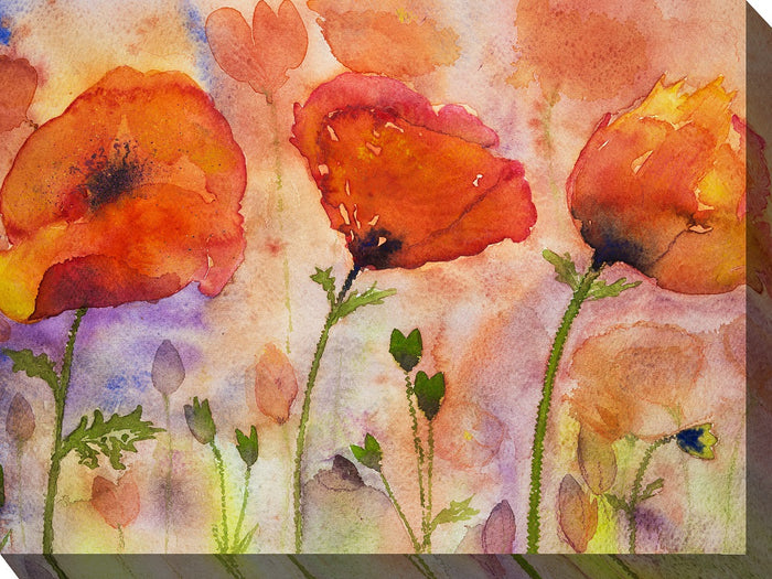 Three Poppies Outdoor Canvas Art - Soothing Company