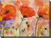 //cdn.shopify.com/s/files/1/2507/6008/products/OU-79229_THREE_POPPIES_40x30_llr.jpg?v=1523177867