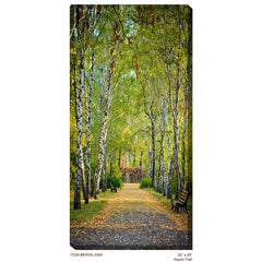 Aspen Trail #2 Outdoor Canvas Art - Soothing Company