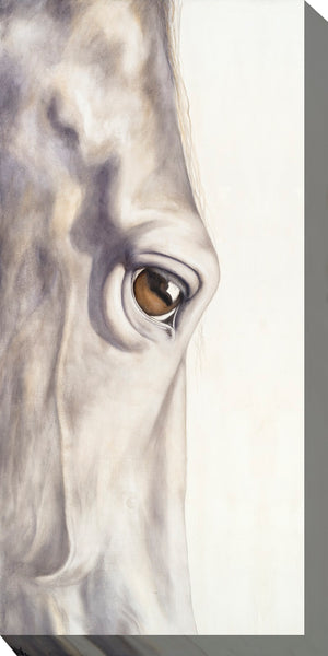 Pale Long Eye Outdoor Canvas Art - Soothing Company