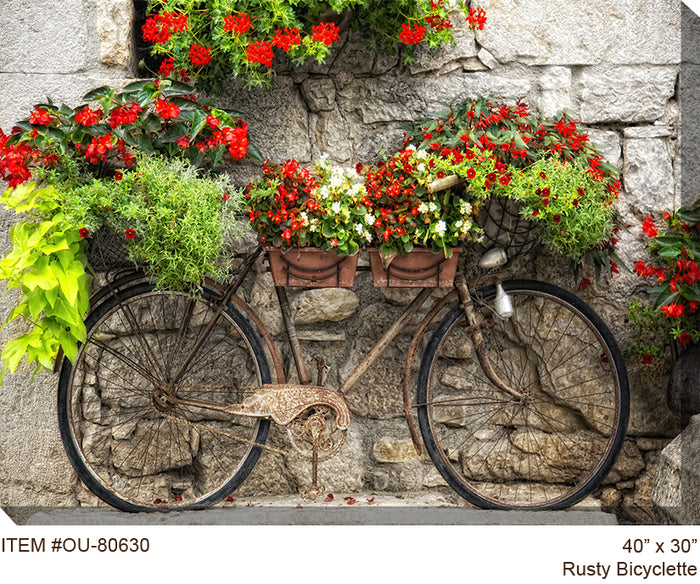 Rusty Bicyclette Outdoor Canvas Art - Soothing Company