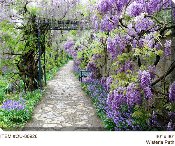 Wisteria Path Outdoor Canvas Art - Soothing Company