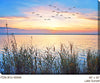 Lake Sunset Outdoor Canvas Art - Soothing Company