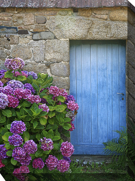 Indigo Entry Outdoor Canvas Art - Soothing Company