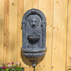 //cdn.shopify.com/s/files/1/2507/6008/products/Royal_Wall_Fountain_Zinc2.jpg?v=1528801169