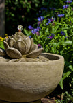 Smithsonian Lotus Fountain - Soothing Company