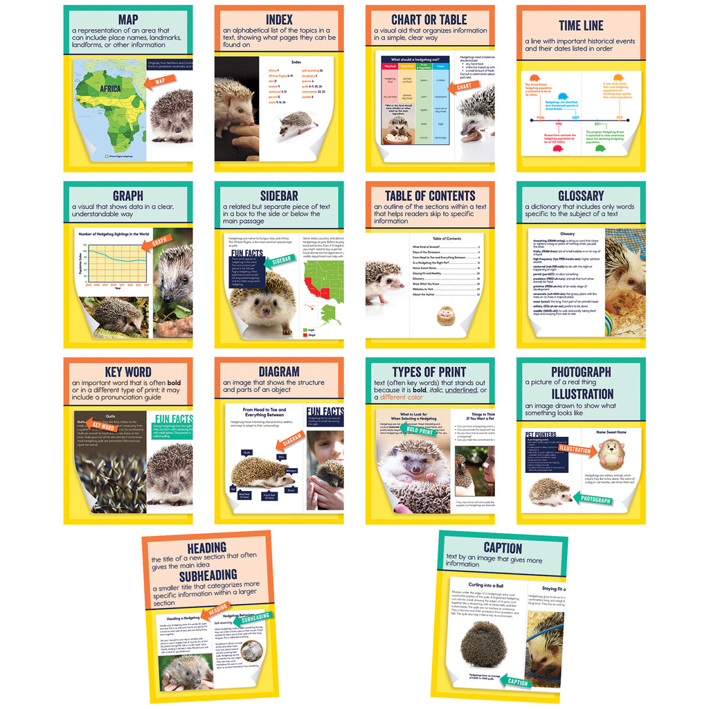 Mini Posters Nonfiction Text Features