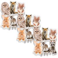 (3 Pk) Woodland Whimsy Animals Cut Outs