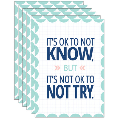 (6 Ea) Its Ok To Not Know Calm & Cool Inspire U Poster