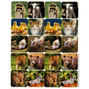 Baby Animals Real Photos Theme Stickers