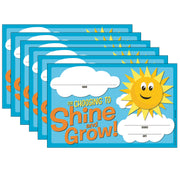 (6 Pk) Choosing To Shine & Grow Award