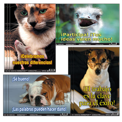 (3 St) Spanish Fun Photo Posters Set 10 4 Posters Per Set