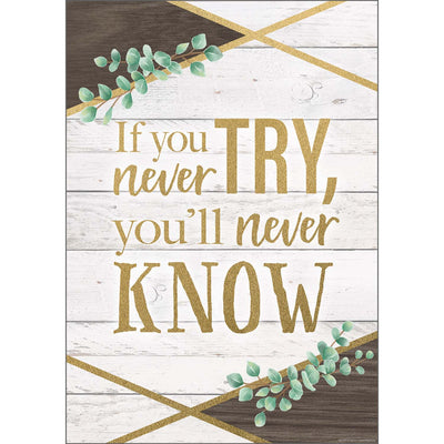 If You Never Try Youll Never Poster - Student Spotlight