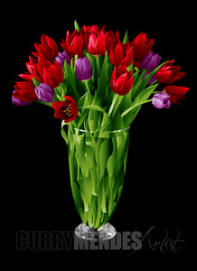 Tulips - Red, Lavender