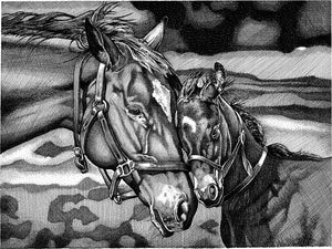 "Horses Stainless Steel Wrap (8""x10"")"