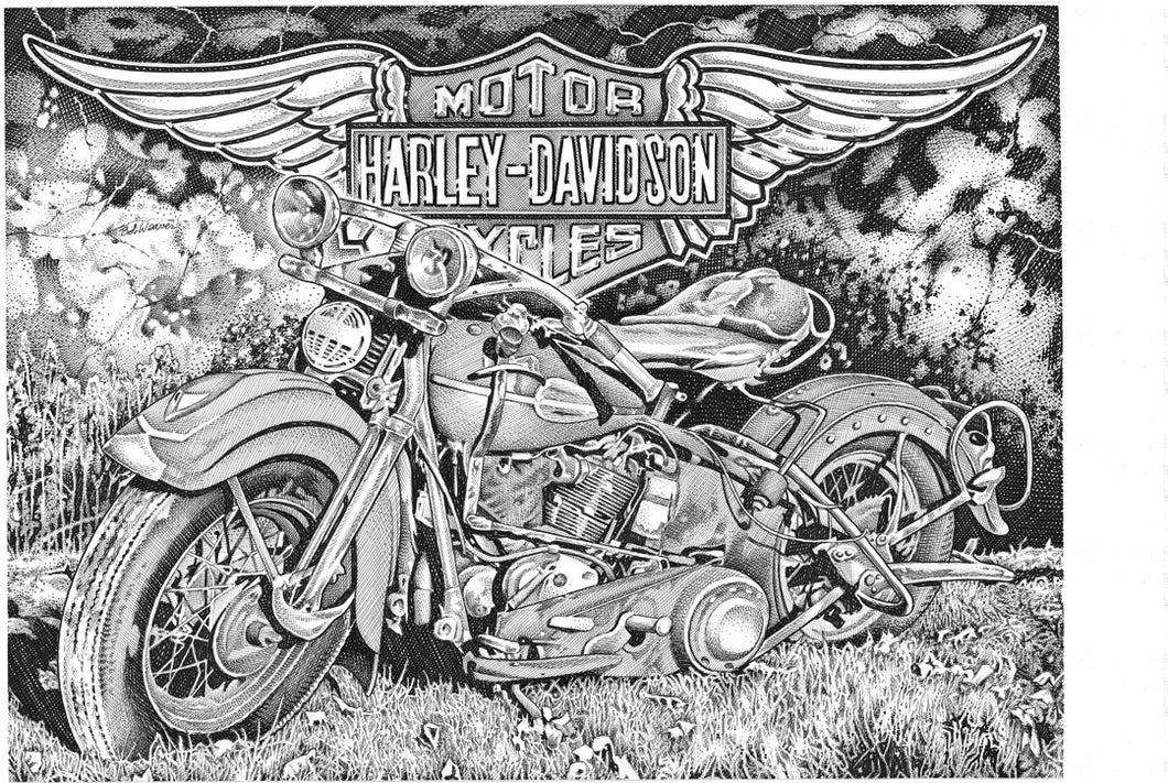 "Harley Stainless Steel Wrap (8""x10"")"