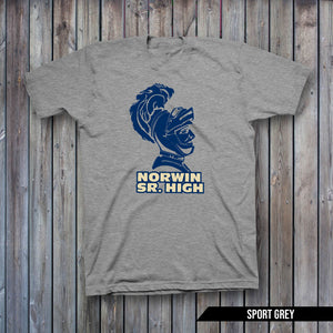 NORWIN KNIGHTS CUSTOM SCHOOL 2
