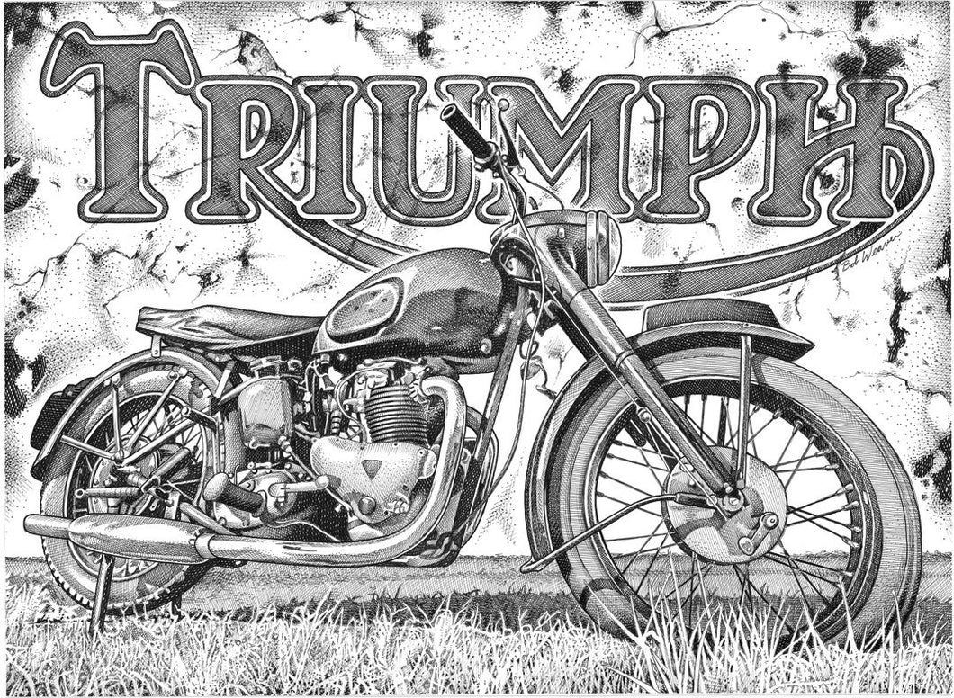 "Triumph Stainless Steel Wrap (8""x10"")"