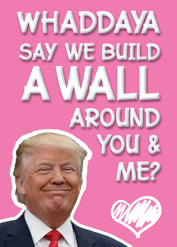 Valentine's Day Card - Build a Wall