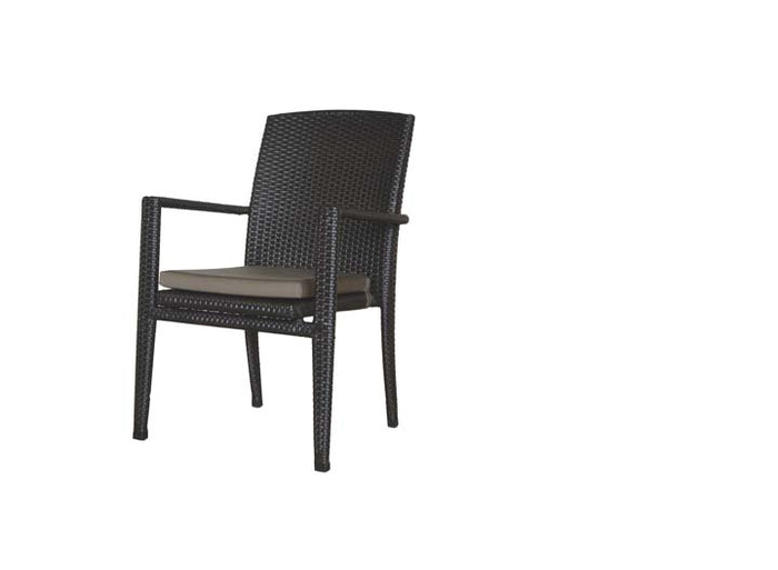New Miami Lakes Dining Arm Chair w/Cushion - Resin & Aluminum
