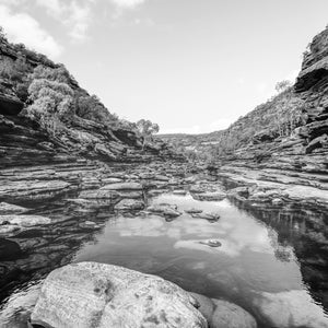 Murchison River Gorge /b&w