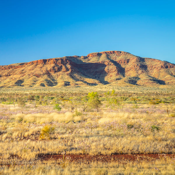 Pilbara Escarpment