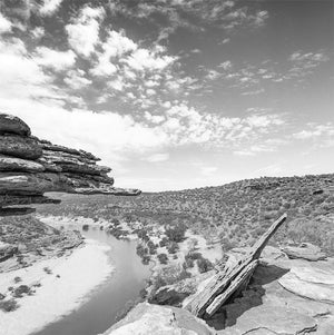 Murchison River Guitar Rock /b&w