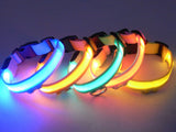 Flashing LED Safety Dog Collar, Adjustable Size, Width 2.5CM