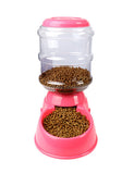 Automatic Water Feeder For Dogs