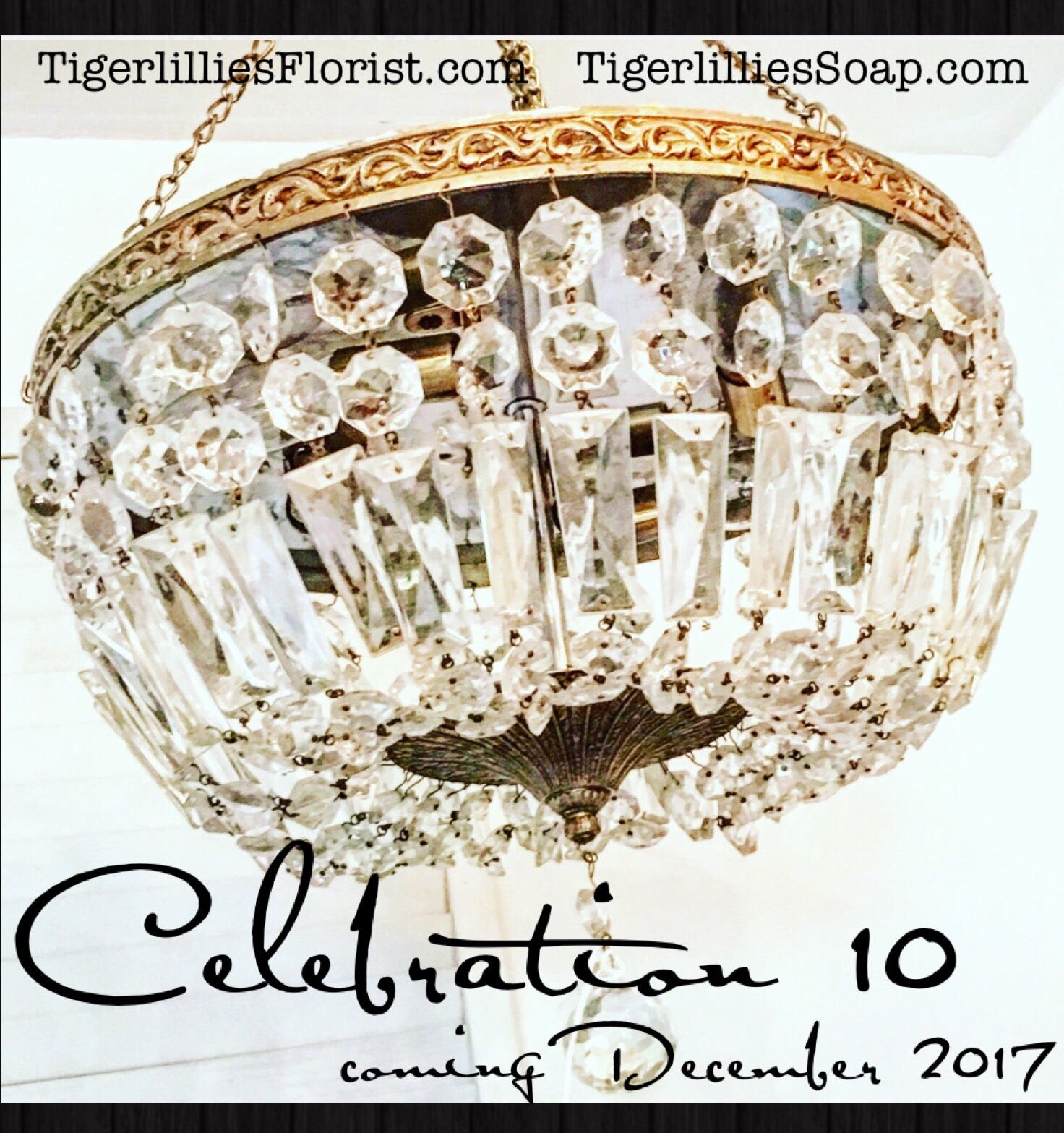 Tigerlillies Soap Launches as we Celebrate 10 YEARS!