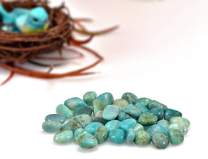 Amazonite Tumbled Polished Gemstone Gemstones