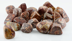 Birds Eye Rhyolite Tumbled Polished Gemstone