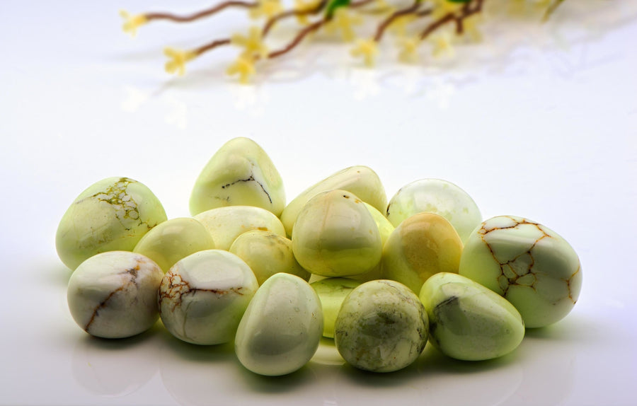Lemon Chrysoprase Polished Tumbled Gemstone