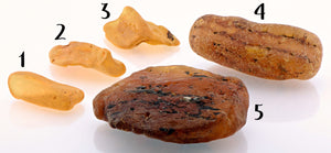 Amber Natural Raw Rough Gemstone - Energy Of Life Stones