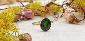 Ammolite Fossil Sterling Silver Ring