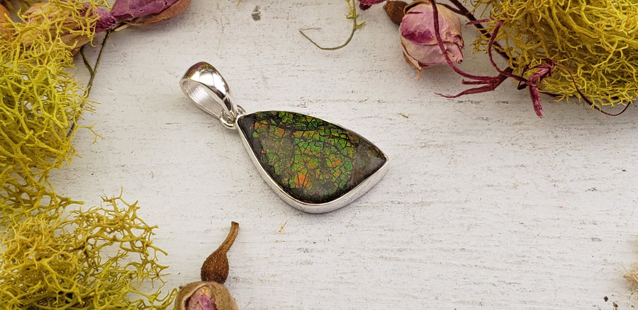 Ammolite Fossil Sterling Silver Pendant