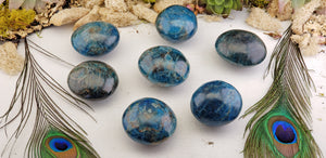 Blue Apatite Meditation Palm Stone - Medium