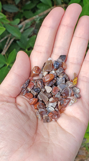 Petrified Wood Gemstone Chips - 1 Ounce Bag
