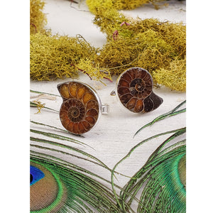 Ammonite Shell Gemstone Sterling Silver Ring