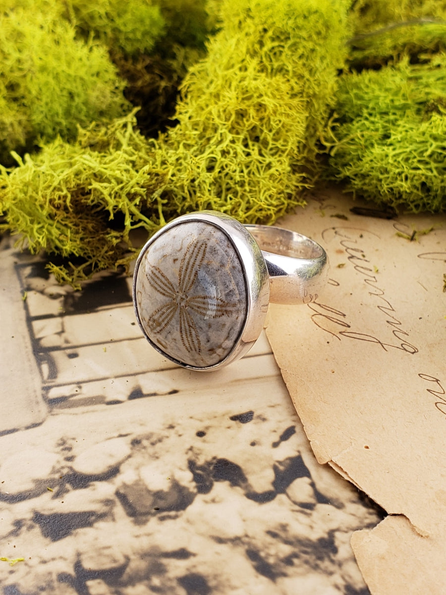 Sand Dollar Sea Urchin Echinoid Gemstone Fossil Sterling Silver Ring Jewelry