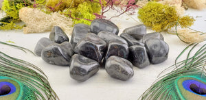Silver Mist Jasper Polished Tumbled Gemstone