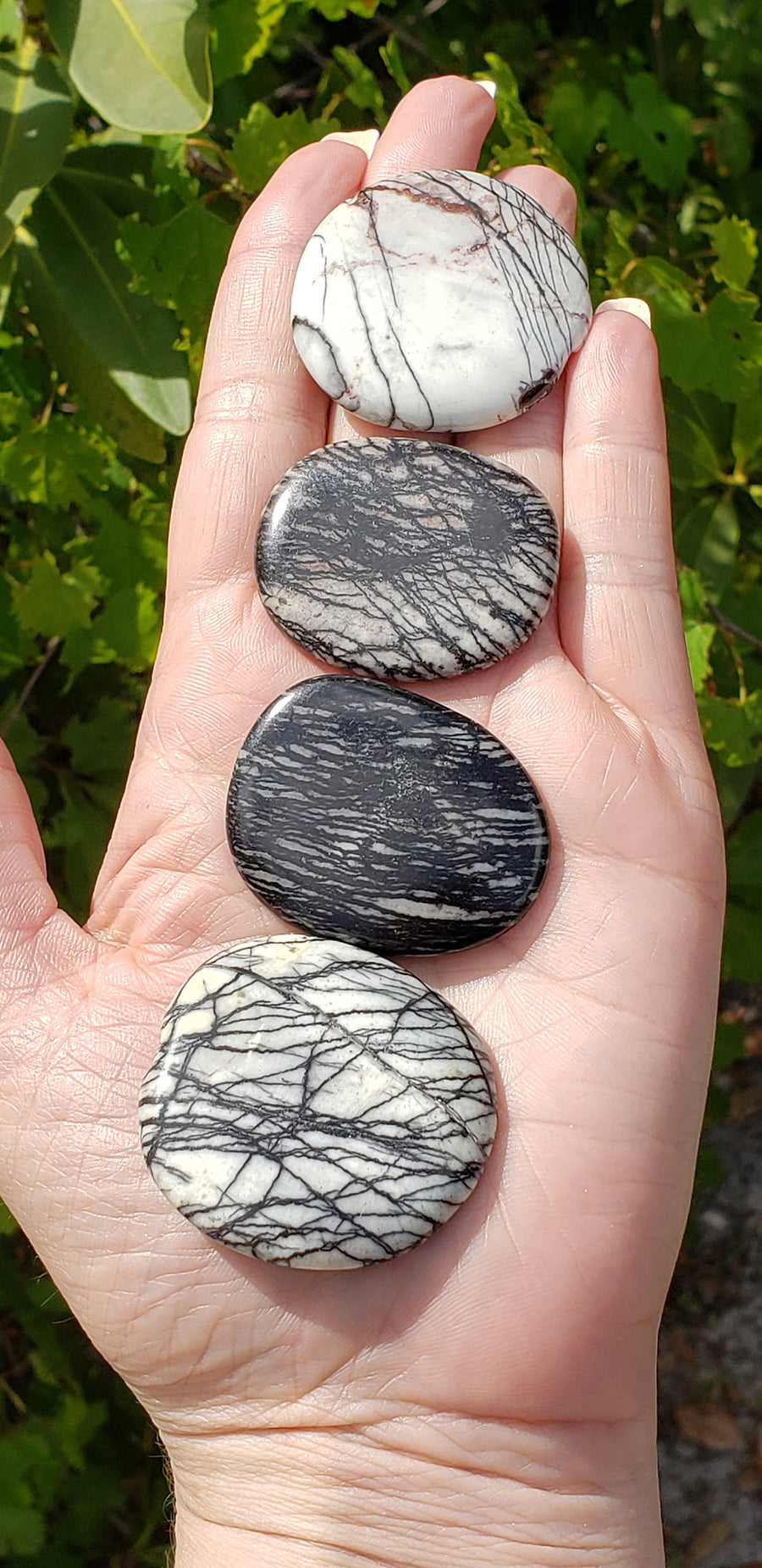 Spider Web Jasper Meditation Palm Stone Gemstone
